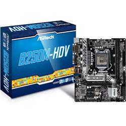 PLACA ASROCK B250M-HDV INTEL1151 DDR4 HDMI PCIE3.0 SATA3 USB3.0 MATX | Quonty.com | 90-MXB3J0-A0UAYZ